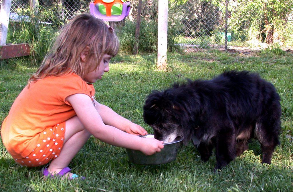 ילדה מאכילה את בלאקי