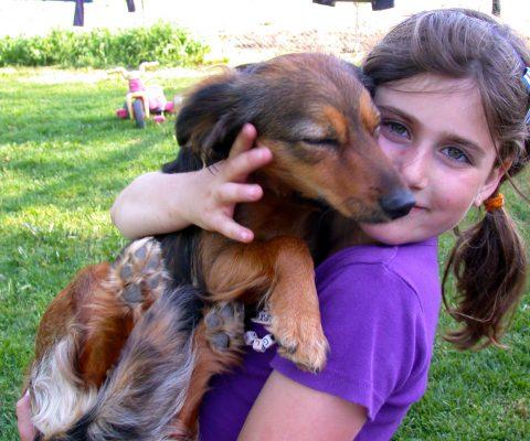 ילדה וכלב על הידיים שלה