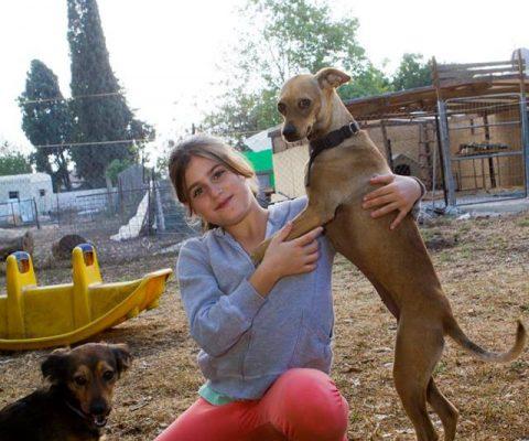 ילדה ושני כלבים